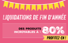 q1_yearend_customer_12-5-1-5-2015_fr