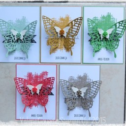 Papillons en In Color