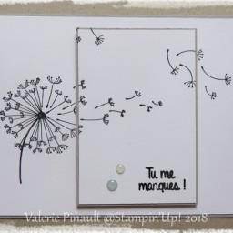 Dandelion Wishes  : carte simple