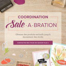 Coordination Sale-a-Bration