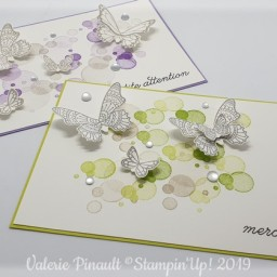 Gala de papillons : 2 cartes