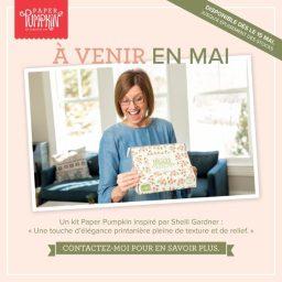 Paperpumpkin arrive en France ……..