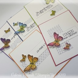 gala de papillons : 5 cartes