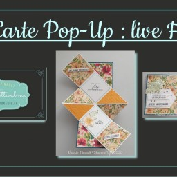 Carte Pop Up Palmier  : live Facebook